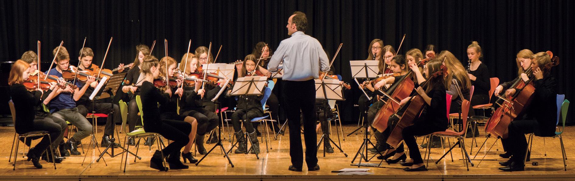 Sinfonieorchester2015